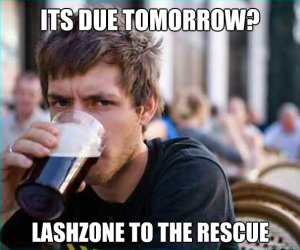A picture made by Lashzone to show what it is they are doing.